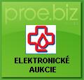Elektronické aukcie